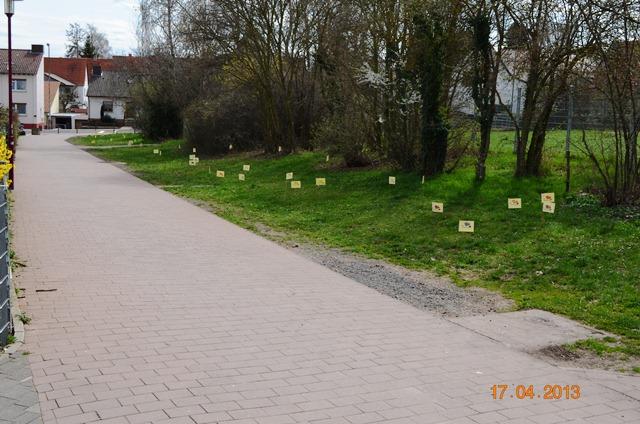Linsenpfad - entlang der Grundschule